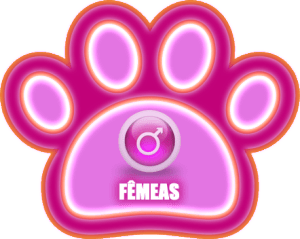 Femeas - Golden